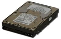 SCSI-Harddisk 216 GB, Перестроенный